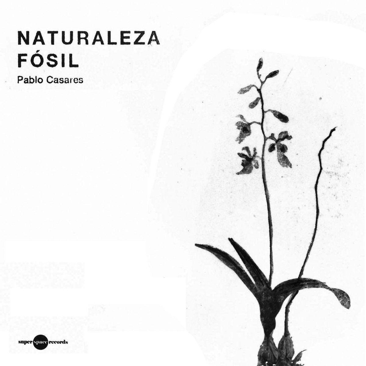 NATURALEZA FOSIL